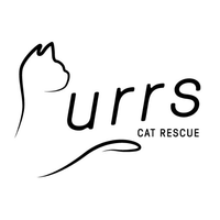 Purrs Cat Rescue